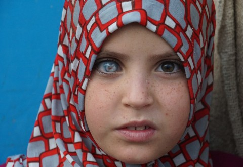 Young Syrian Girl at Akcakale Refugee Facility (PRNewsFoto/Turkish Heritage Organization)